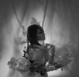 Flowers by Ashai-Autodefe
