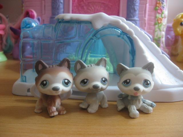 littlest pet shop polar puppies by twilightberry on deviantart