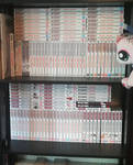 Ginga manga by Twilightberry