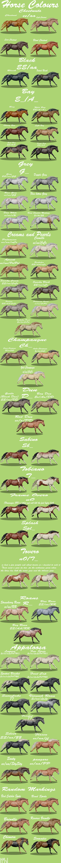 Horse colours complete by EdithSparrow