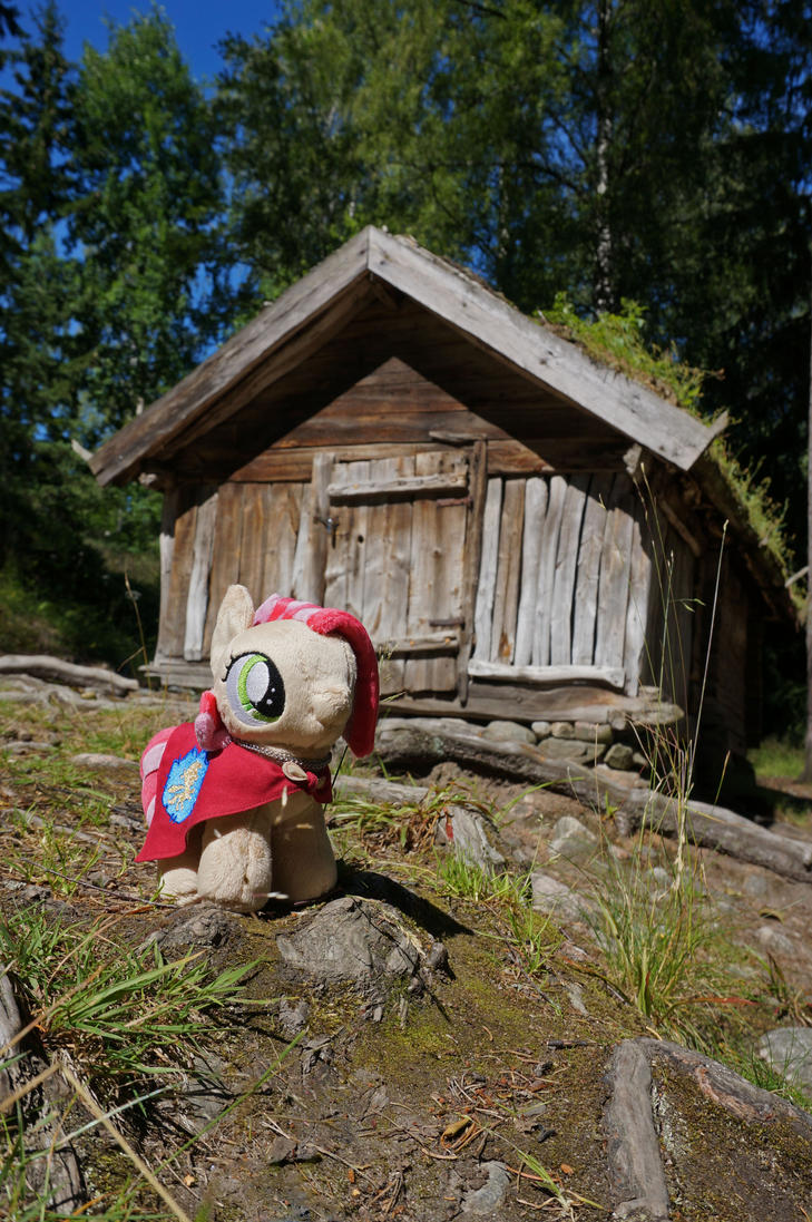 Babs Seed in Open-Air Museum by Cabraloca