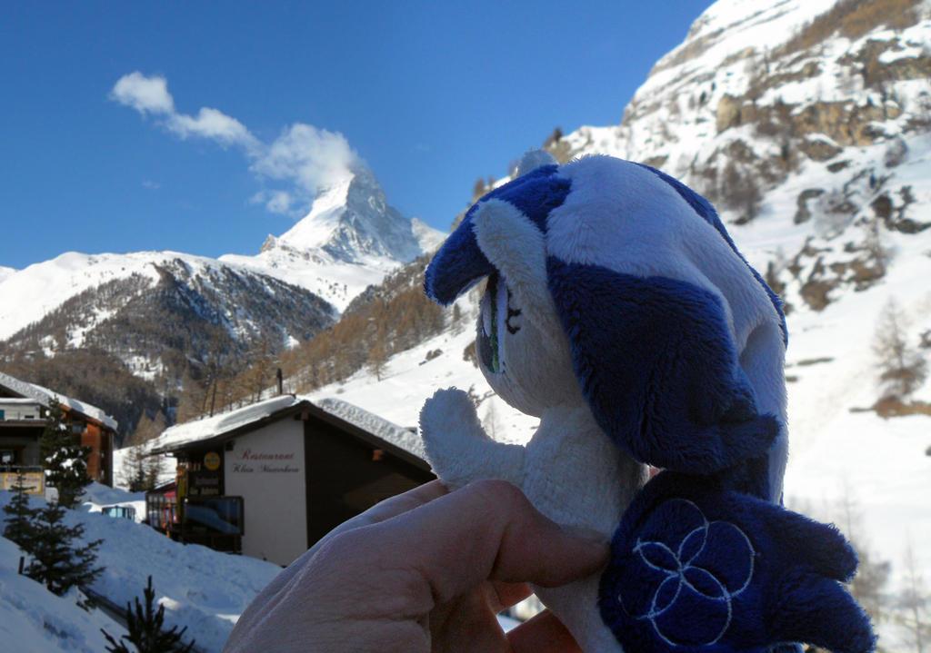 Seapony Muffinkarton at Matterhorn, Zermatt by Cabraloca