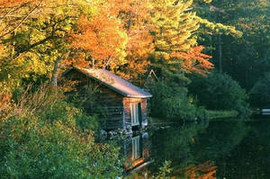 Shack in Autumn by Shelly-J