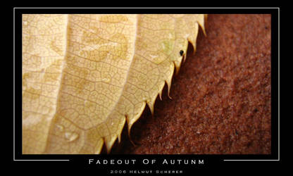 Fadeout Of Autumn by confusInk