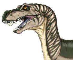 Raptor - Coloured by Shimmergloom