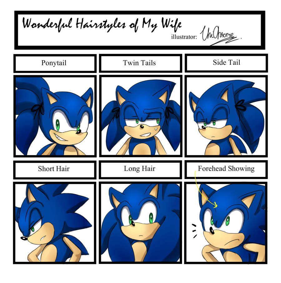 Sonic Hairstyle Meme by Unichrome-uni