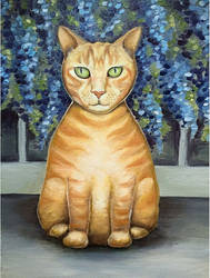 Ginger cat Olly