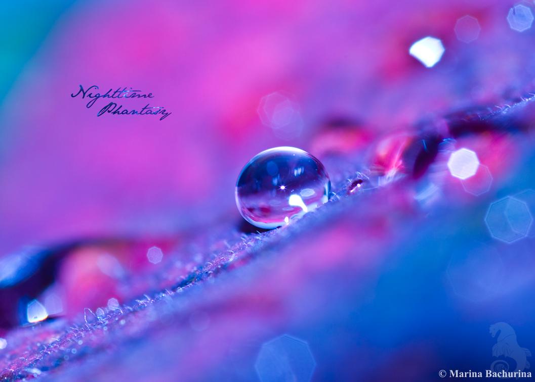 Nighttime Phantasy by Gryphonia