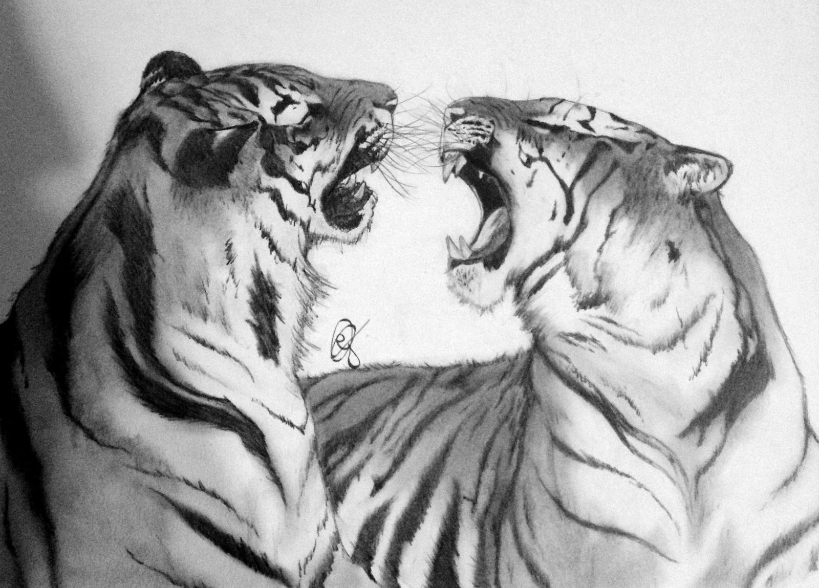 bengal tigers by gabriellec drawings on deviantart