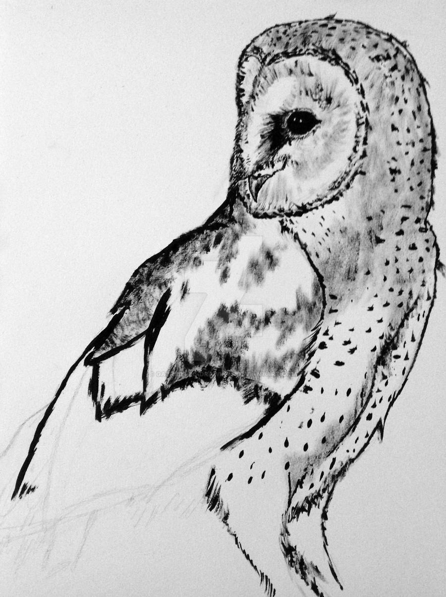barn owl wip by gabriellec drawings on deviantart