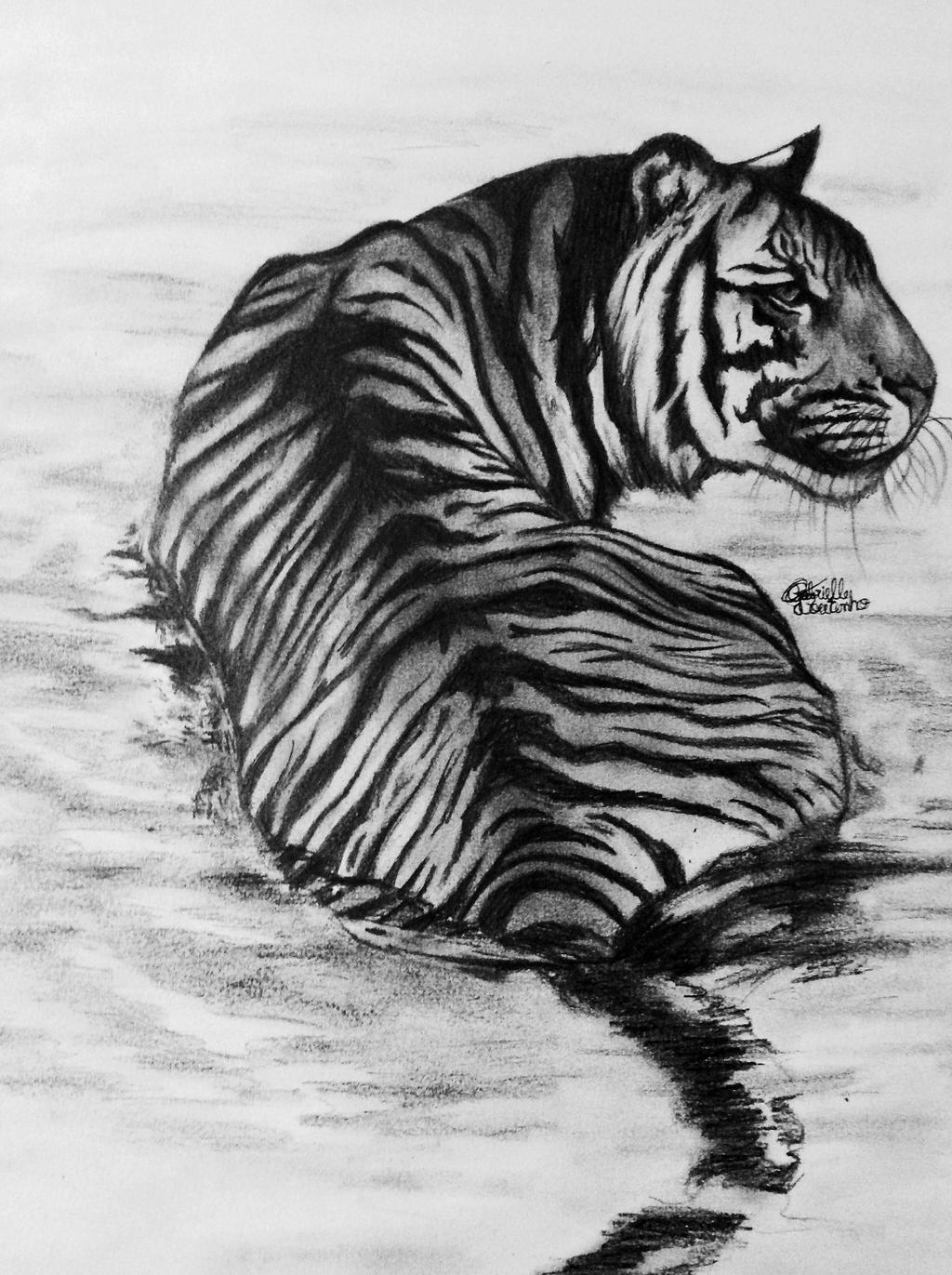 drawings beauty deviantart animals