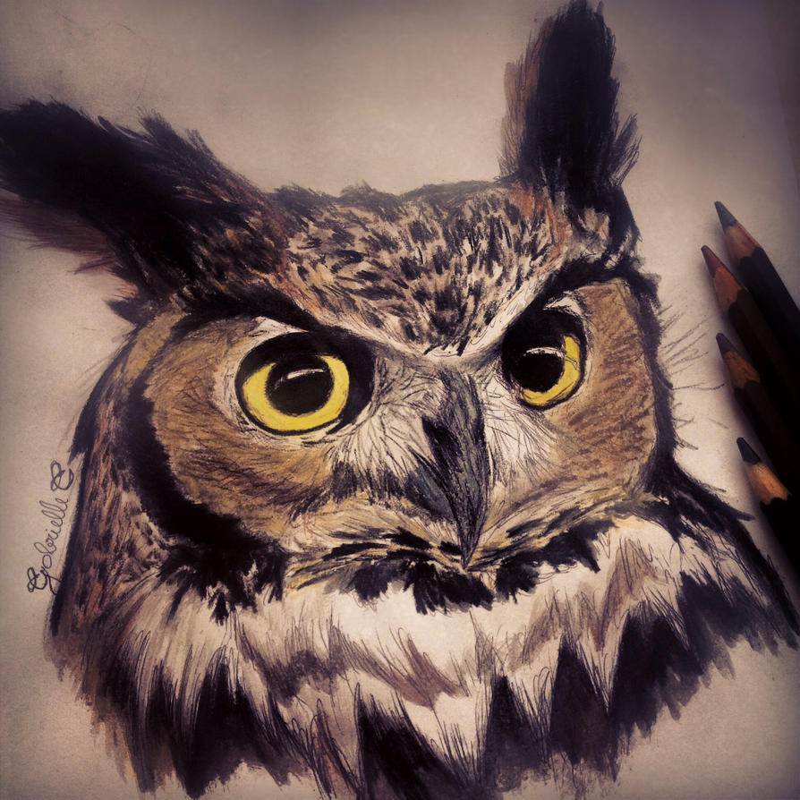Great horned owl by gabriellec drawings on deviantart for Cool drawings of owls