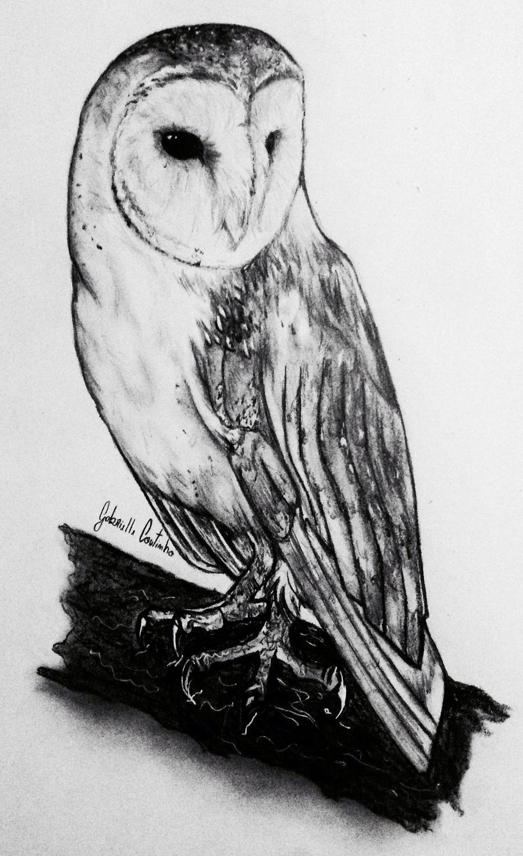 Barn Owl in Pencil by GabrielleC-Drawings on DeviantArt