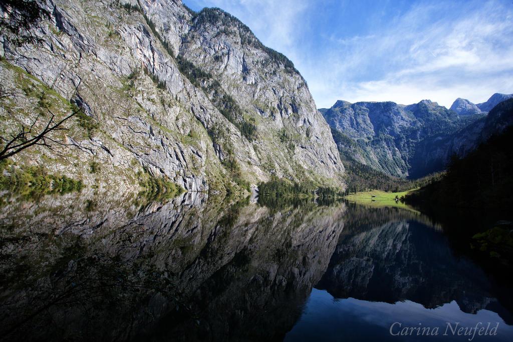 Reflections by CarinaNeufeld