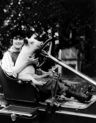 Pearl White With A Pig, 1916 by NJDVINTAGE