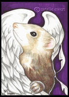 Angel Ferret in Purple by natamon