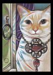 Bejeweled Cat 2