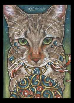 Bejeweled Cat 40
