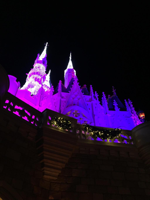 PICTO-Cinderella Castle in Winter 2 by rosa-pegasus
