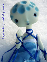 BJD: Moon and Snow 2