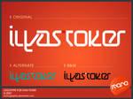 Logotype_IlyasToker