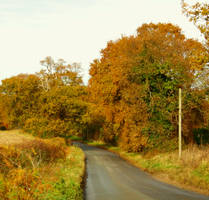 Autumn Road by Its-Only-Stock