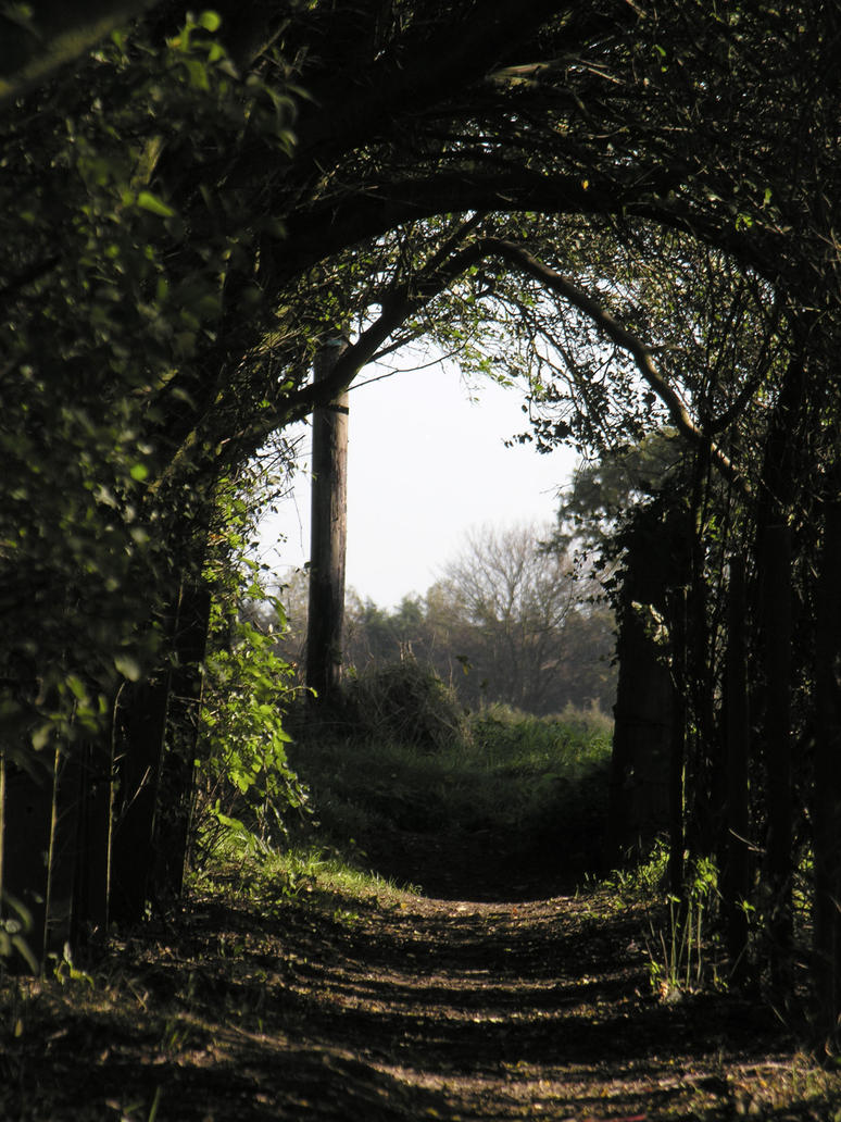 natural tunnel by Its-Only-Stock
