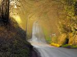 Countryside Road - Original