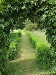 Arch .:. Path
