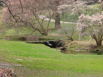 spring stream by skoox