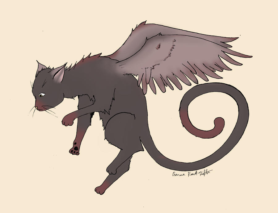 Flying Cat by pun