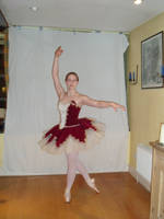 Ballet: Stand by pun
