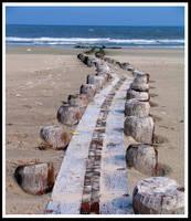 Beach Walkway by coldshadows