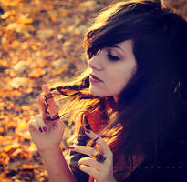 Red leaves blow in the wind by onechristina