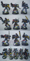 Space Wolves Grey Hunters 1