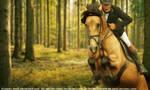 Buckskin Forest