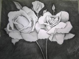 ROSES by Tinkerbell73