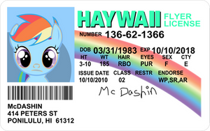 Flyers License - McDashin by mandydax