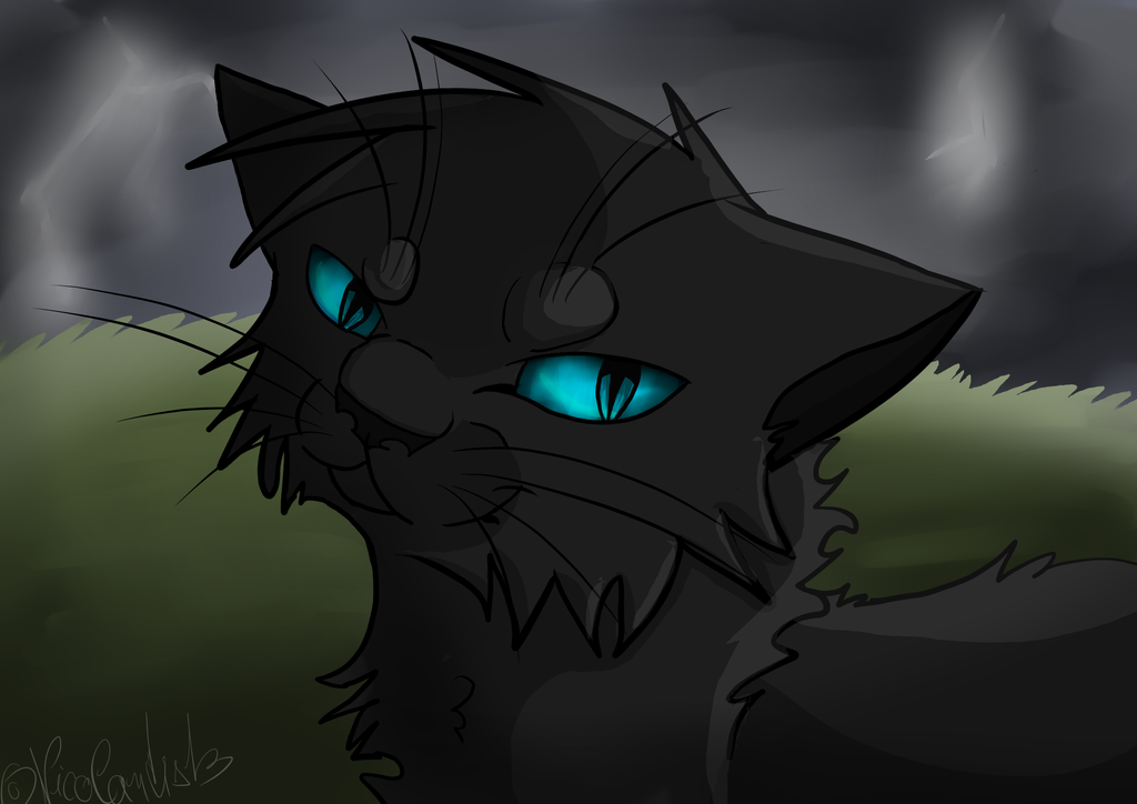 Crowfeather by NikyArtist