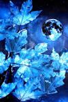 Silver Dream by HelaLe