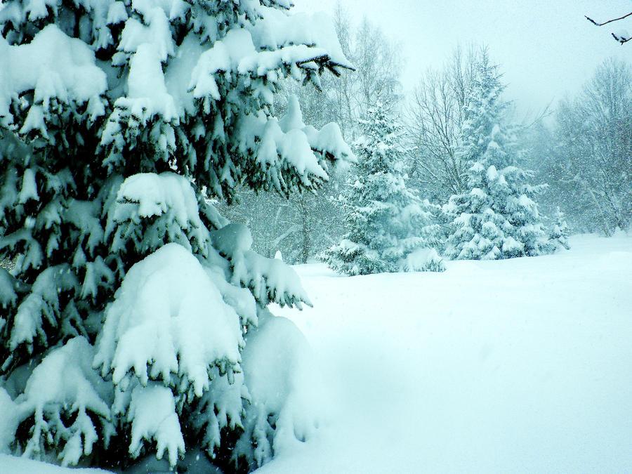 December by HelaLe
