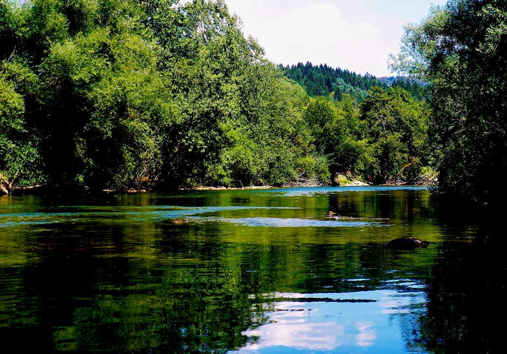 Kupa river by HelaLe