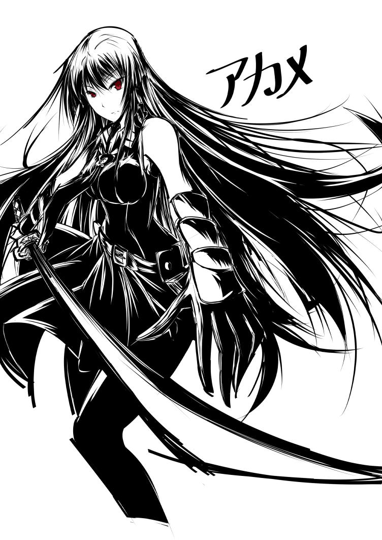 Akame by Zraty