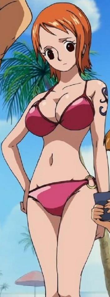 Full View Nami Bikini by Knightwalker591 on DeviantArt