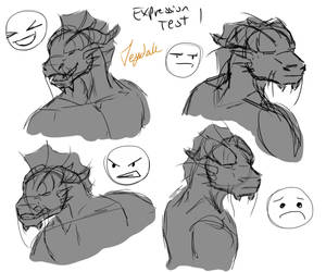 Expression Test