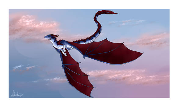 aquamaroon dragon