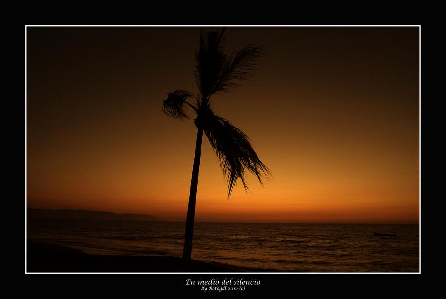 En medio del silencio by BetoGDL1