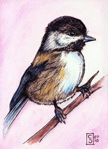 Chickadee by Ettelloc