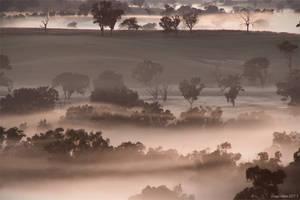 Foggy Morning by CapturingTheNight