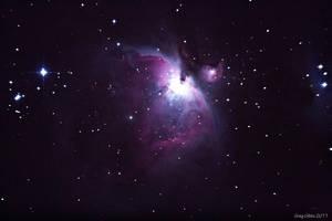 M42 First Light by CapturingTheNight